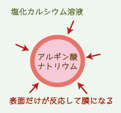 あかりんご隊6